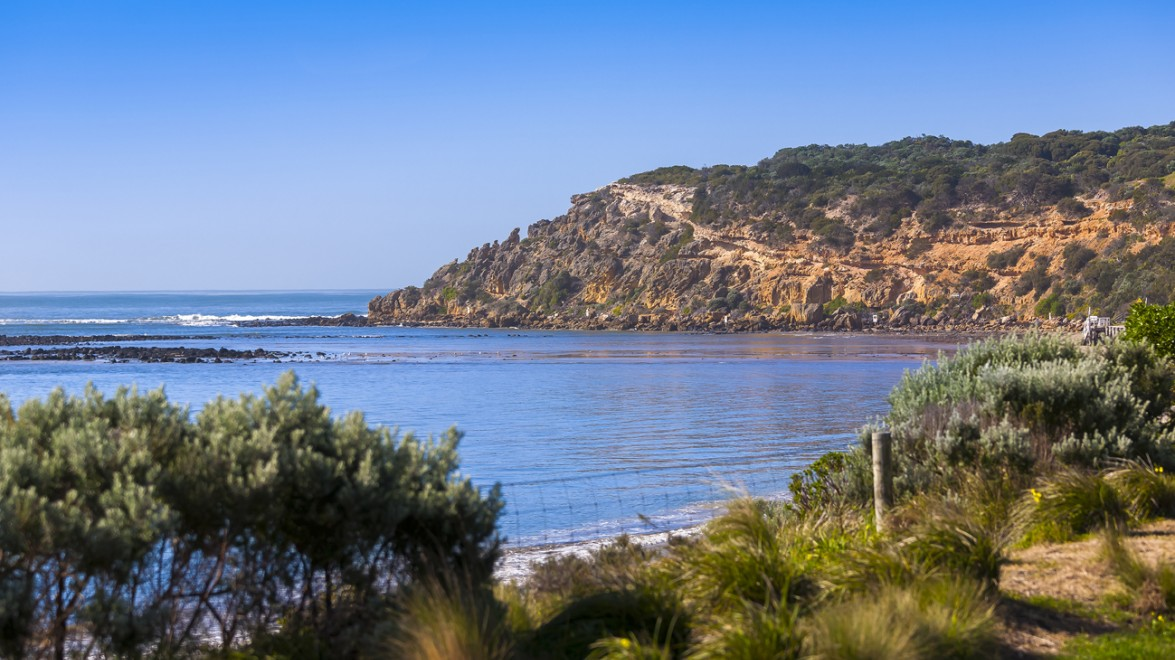 Barwon Coast Committee of Management | Barwon Coast